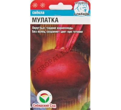 Свекла Мулатка, 2 г,  Сибирский сад